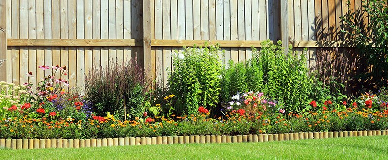spring garden with wooden fence