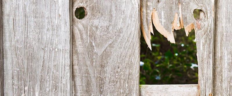 garden fence panel hole